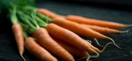 beta carotène dans la carotte
