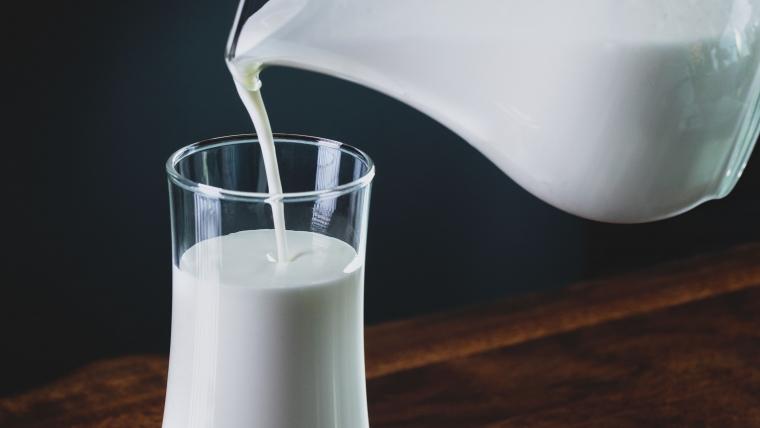 rôle calcium du lait